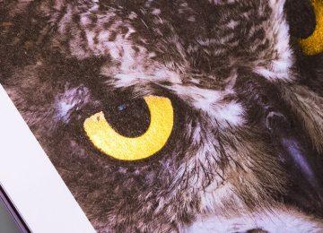 digital metal owl